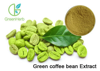China Organic Plant Extract Powder , Pure Green Coffee Bean Extract For Weight Loss supplier