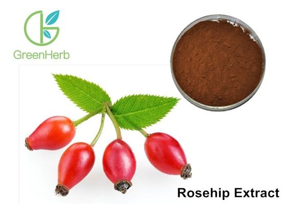 China Max 5% Moisture Fruit Extract Powder Brown Fine Bulk Rosehip Extract Powder​ supplier