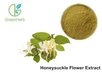 China Antibacterial Herbal Plant Extract , Honeysuckle Flower Extract 5% Chlorogenic Acid supplier