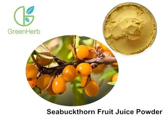 Healthy Fruit Juice Powder Hippophae Rhamnoides Linn Promoting Wound Healing