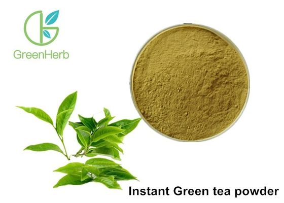 China Instant Green Tea Extract Powder 30% Polyphenols For Coffee Beverage Product supplier