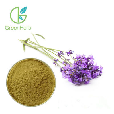 China Lavandula Angustifolia Natural Lavender Extract Powder UV Test Method supplier