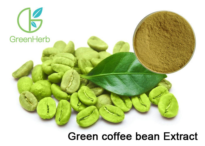 Plant Extract Powder Pure Green Coffee Bean Extract For Weight Loss