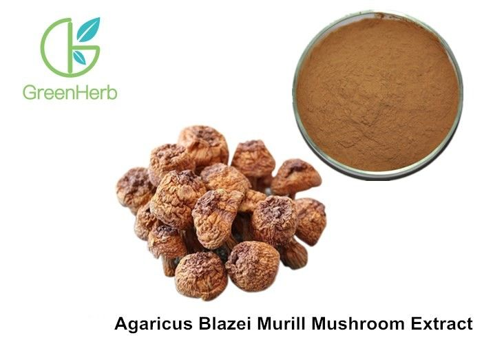 Health Supplement Herbal Plant Extract Agaricus Blazei ...700 x 500 jpeg 40 КБ