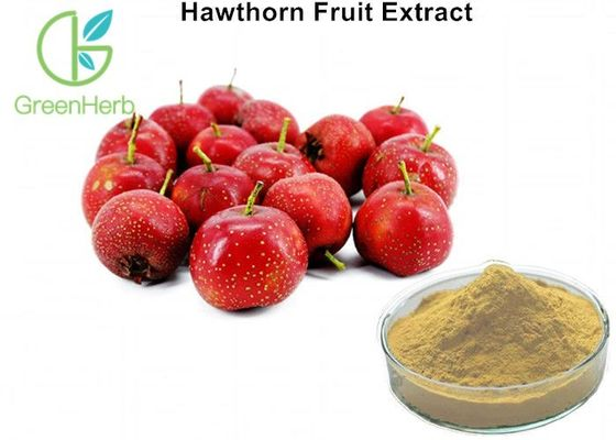 5% Flavonoids Fruit Extract Powder Hawthorn Herb For High Blood Pressure