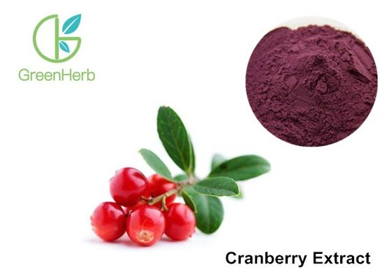 Cranberry Standardized Extract 25% Anthocyanins , Cranberry Juice Extract