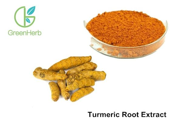 China 95% Curcumins Natural Food Pigments Turmeric Root Extract Anti - Inflammatory factory
