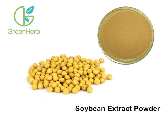 High Purity Plant Extract Powder 40% Soy Isoflavones Extract  Natural Ingredient