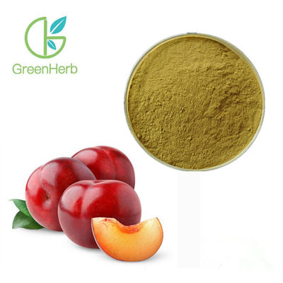 China Anti Allergy Dried Plum Extract Reduce Fatigue Brown Fine Powder UV Test Method factory