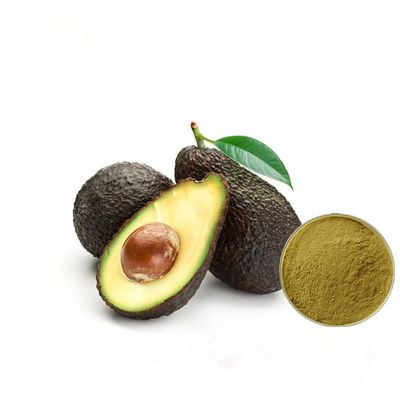 China Improve Brain Avocado Fruit Extract Brown Yellow Color Powder HPLC Test factory