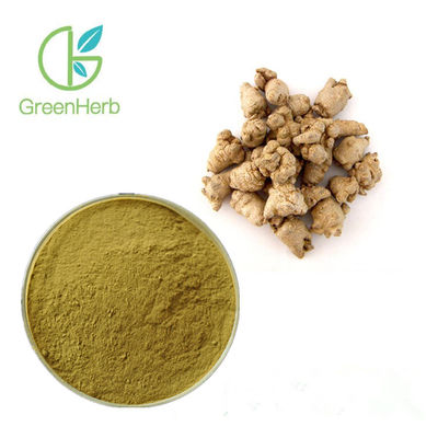 Brown Yellow Plant Extract Powder 100% Pure Natural Sanchi Extract 80 Mesh