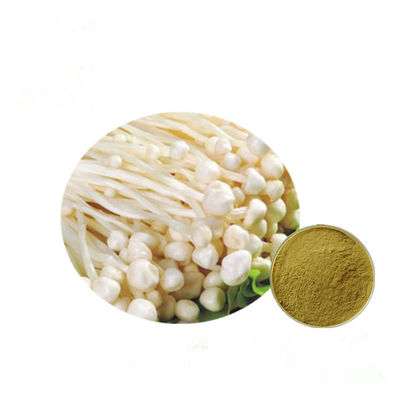 Brown Yellow Fine Enoki Mushroom Extract Strengthen Immune System HPLC Test Method