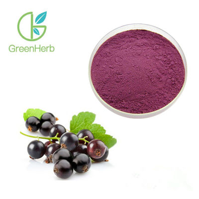 Deep Purple Red Black Currant Extract Powder Health Food Supplements UV Test