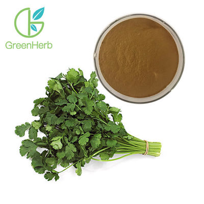 100% Natural Vegetable Extract Powder Coriander Extract For Weight Loss Supplement