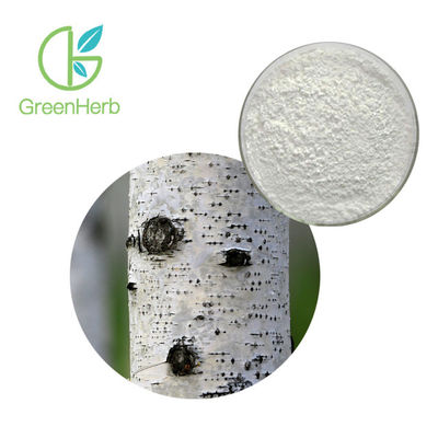 China White Fine Birch Bark Extract Water Soluble Anti Inflammatory HPLC Test Method factory