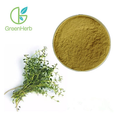 China 80 Mesh Plant Extract Powder Thyme Vulgaris Extract Low Blood Pressure factory