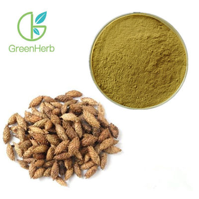 China Pure Plant Extract Powder Seed Part Xanthium Sibiricum Extract 24 months Shelf Life factory
