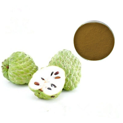 China Natural Sugar Apple Extract, Sweetsop Extract,Sweetsop Extract Powder,Sweetsop Extract 4:1 factory