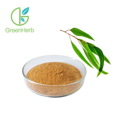 China Health Natural 10:1 Eucalyptus Leaf Extract Powder Eucalyptus Extract factory