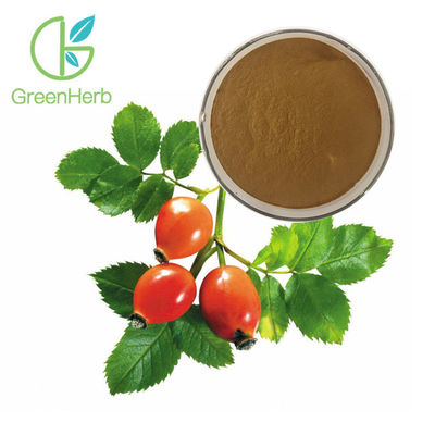 Fruit Extract Powder Herbal Extract Rose Hips Extract Powder 5% VC