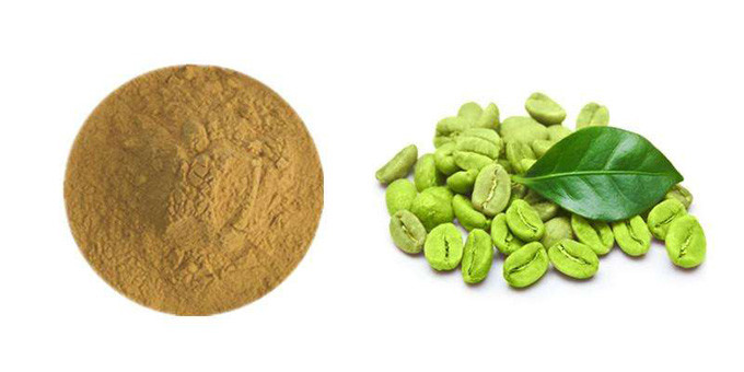 Plant Extract Powder , Pure Green Coffee Bean Extract For Weight Loss